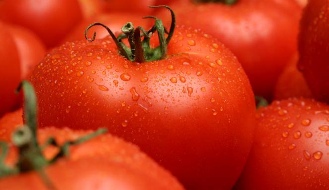 tomat prostat